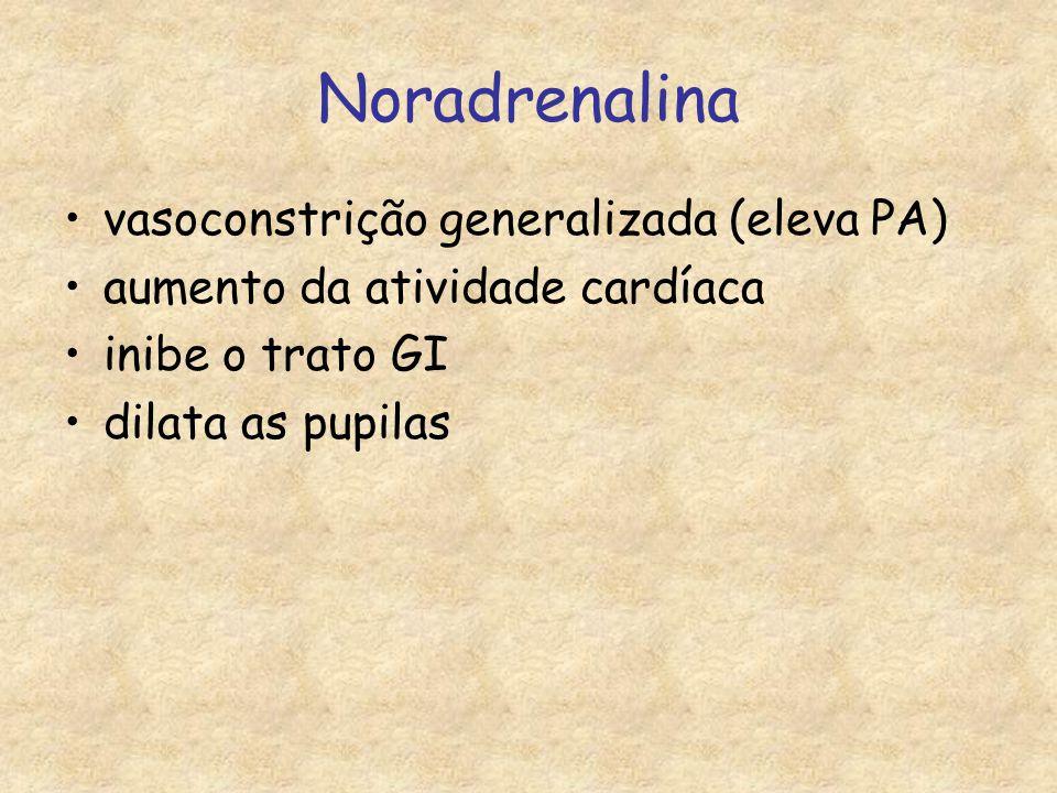 Noradrenalina vasoconstrição generalizada (eleva PA)