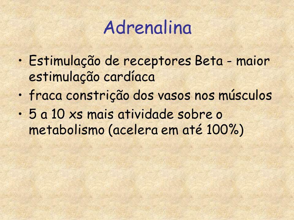Adrenalina Estimulação de receptores Beta - maior estimulação cardíaca