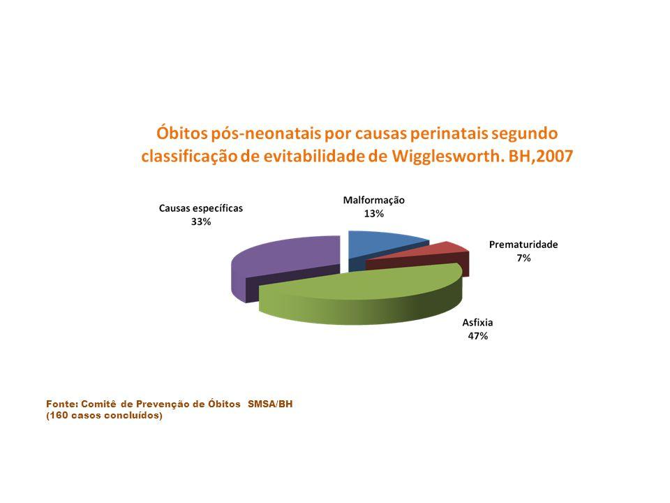 Fonte: Comitê de Prevenção de Óbitos SMSA/BH (160 casos concluídos)