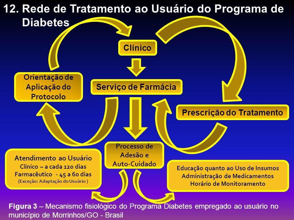 12. Rede de Tratamento ao Usuário do Programa de Diabetes