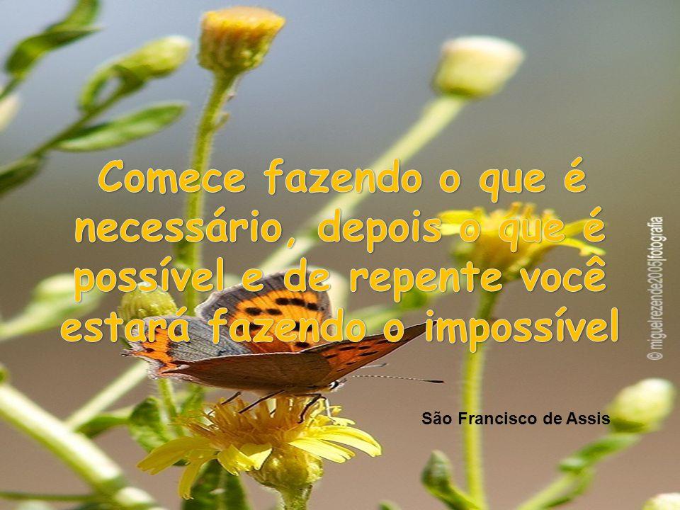 Comece fazendo o que é necessário, depois o que é possível e de repente você estará fazendo o impossível