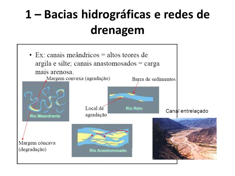 1 – Bacias hidrográficas e redes de drenagem