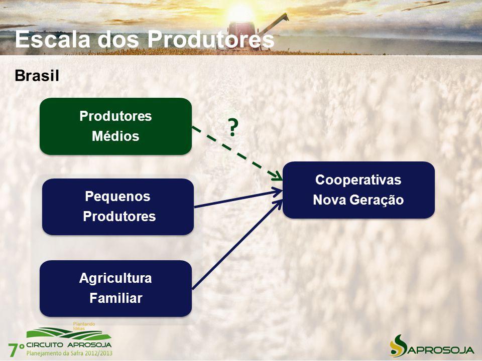 Escala dos Produtores Brasil Produtores Médios Cooperativas