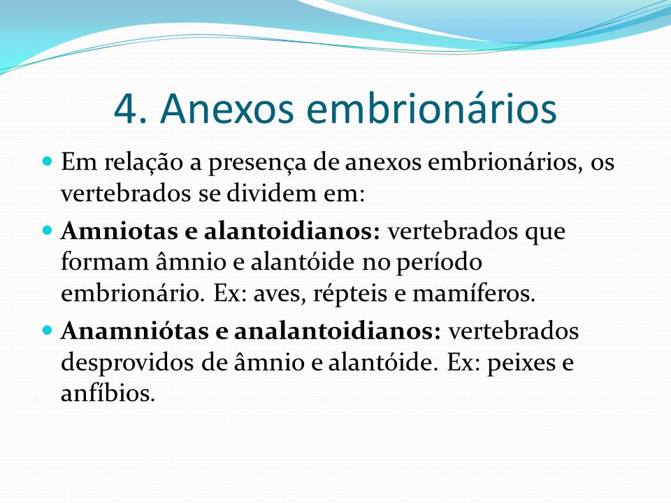 4. Anexos embrionários Em relação a presença de anexos embrionários, os vertebrados se dividem em: