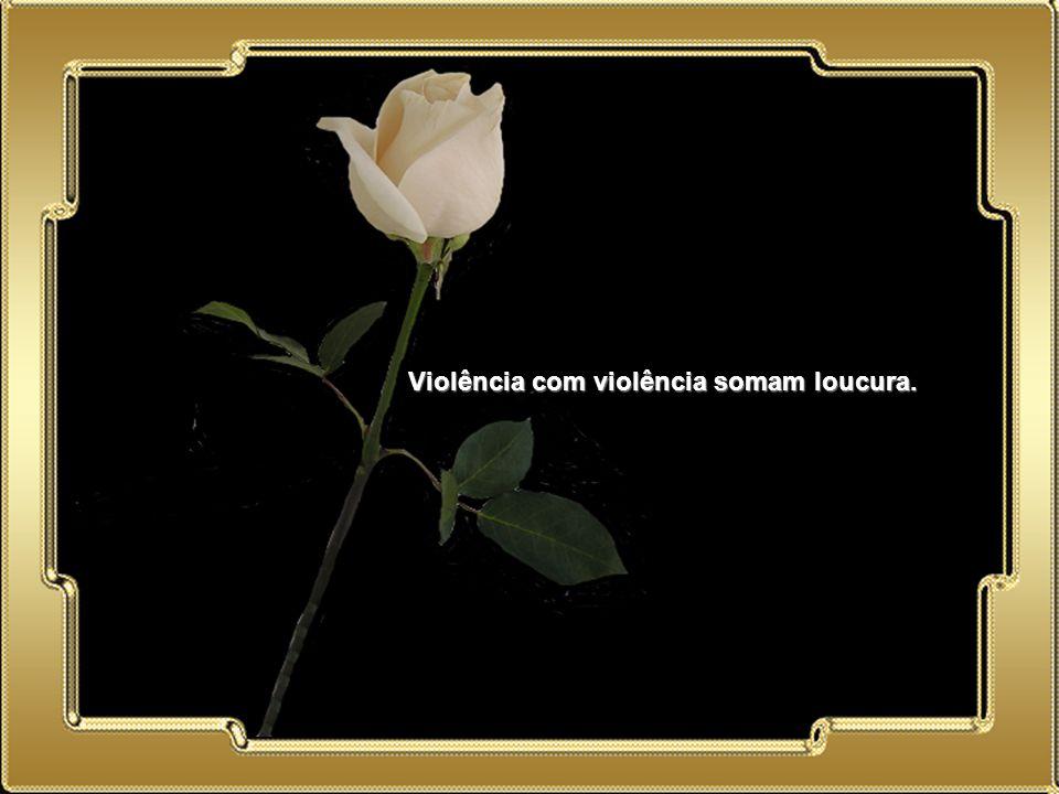 Violência com violência somam loucura.