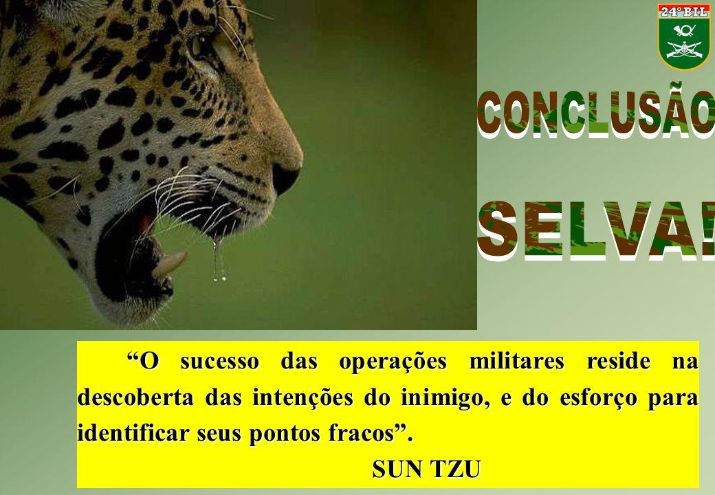 CONCLUSÃO SELVA!