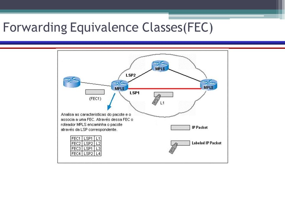 Forwarding Equivalence Classes(FEC)