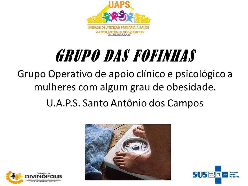 U.A.P.S. Santo Antônio dos Campos