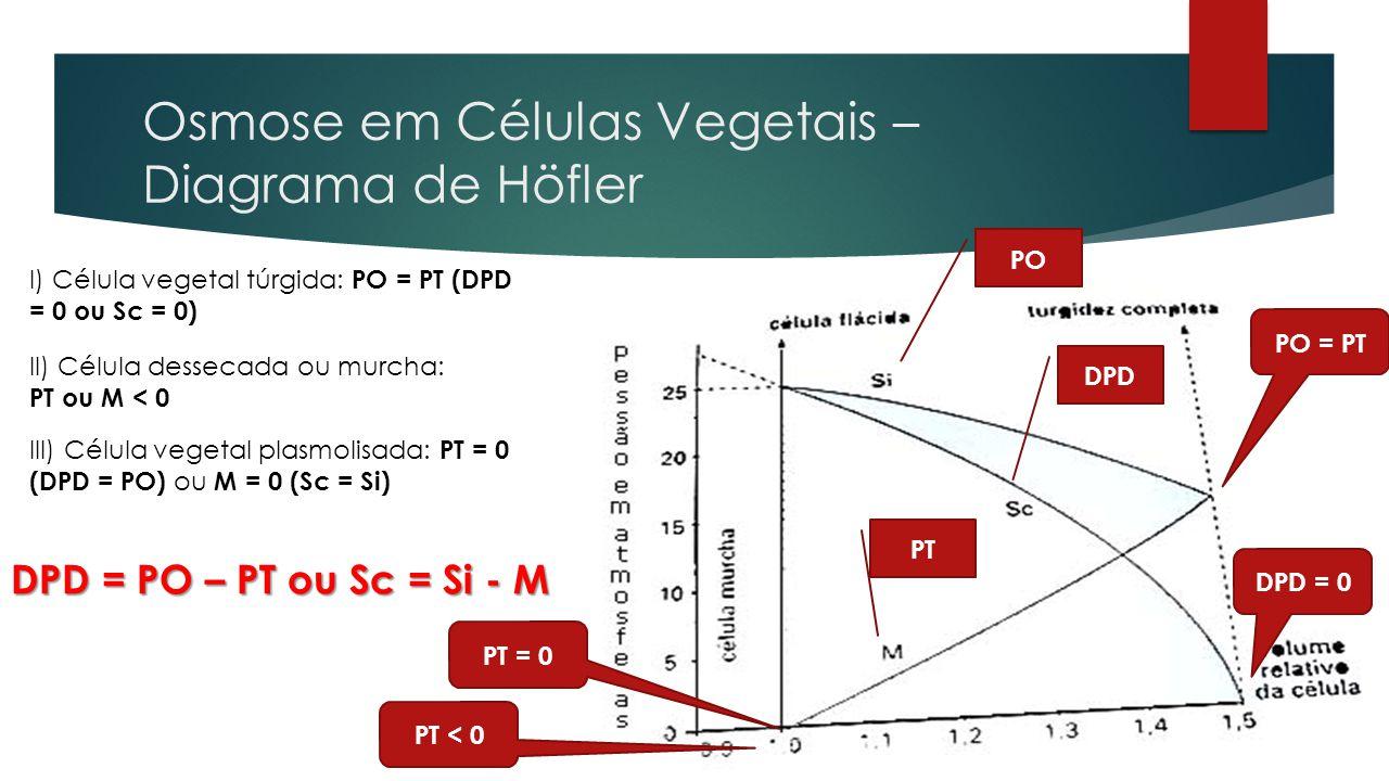 Osmose em Células Vegetais – Diagrama de Höfler