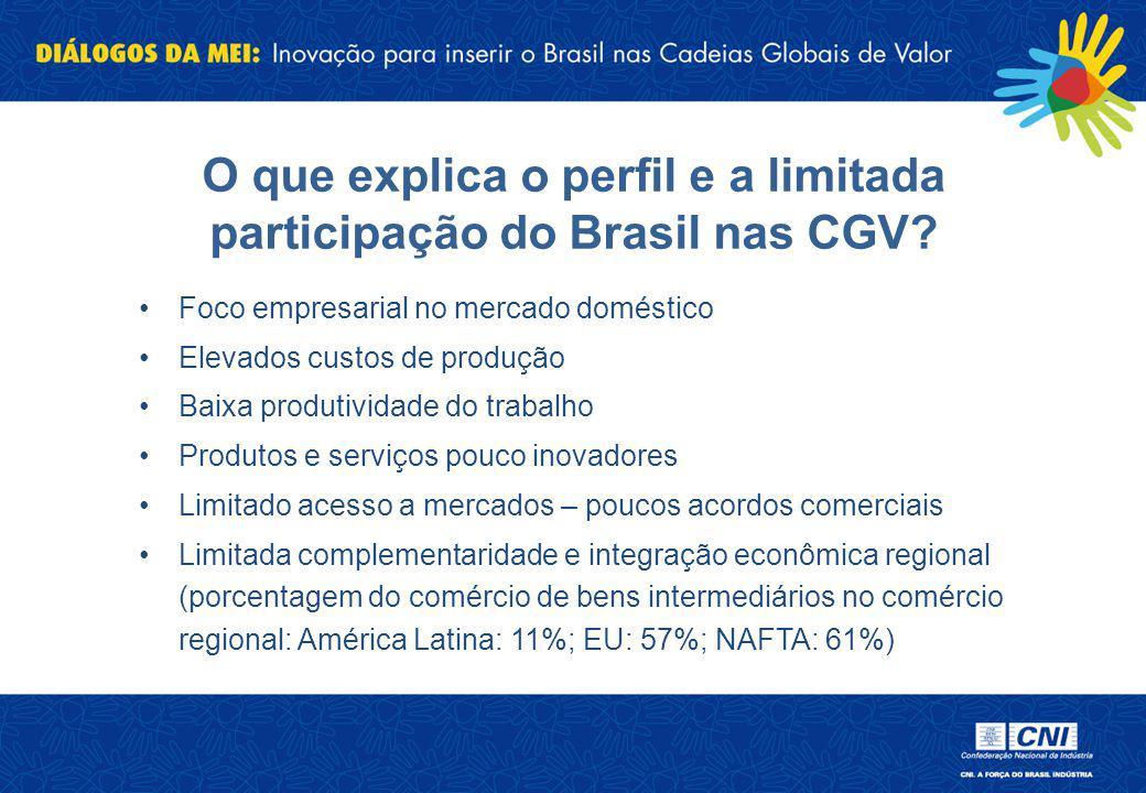 O que explica o perfil e a limitada participação do Brasil nas CGV