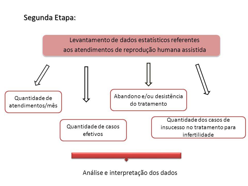 Segunda Etapa: Levantamento de dados estatísticos referentes