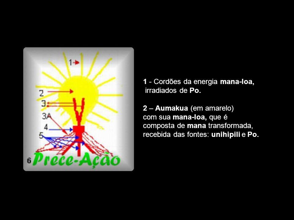 1 - Cordões da energia mana-loa,