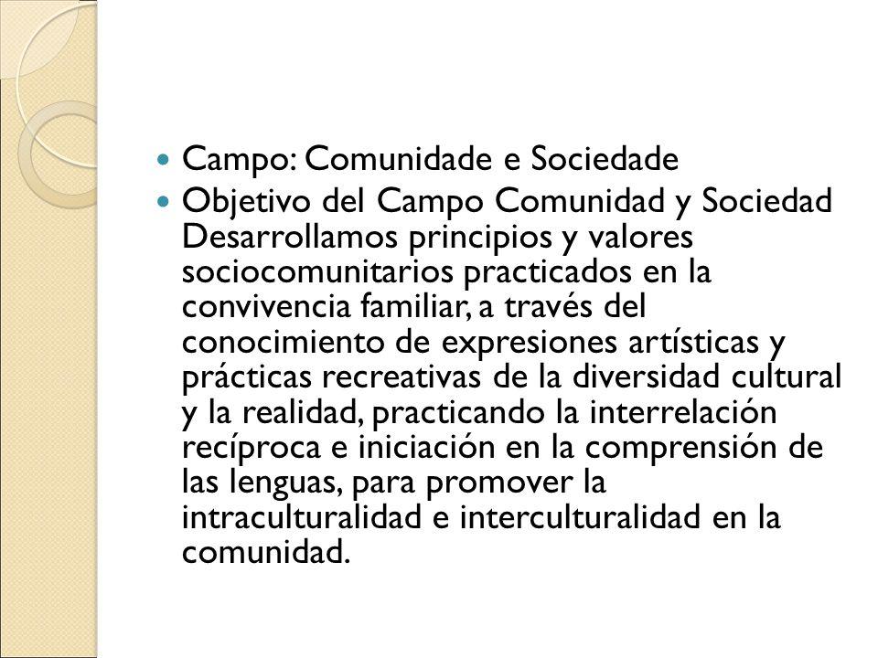 Campo: Comunidade e Sociedade