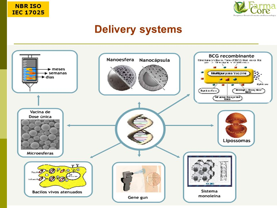 NBR ISO IEC 17025 Delivery systems