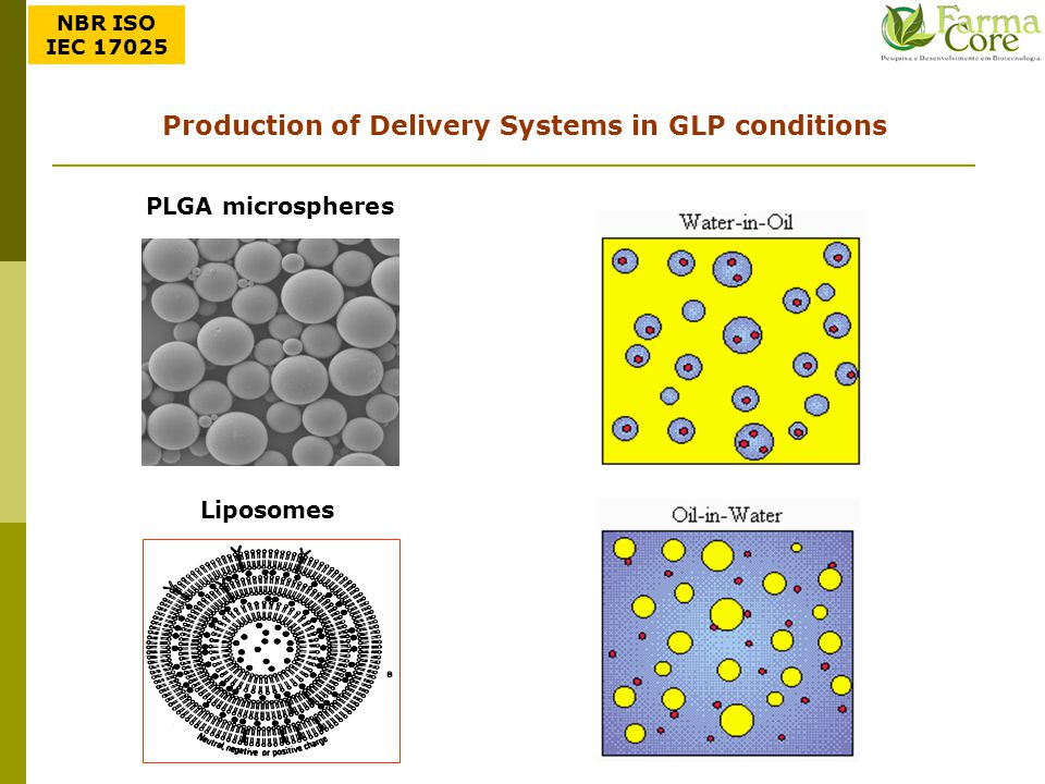 Production of Delivery Systems in GLP conditions
