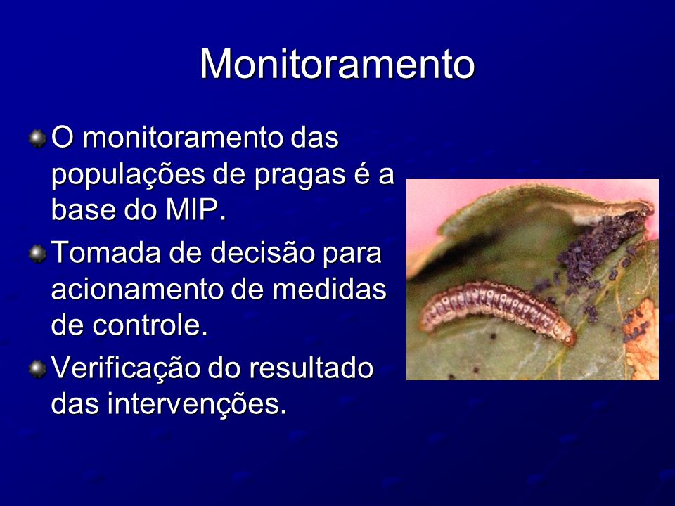 Monitoramento O monitoramento das populações de pragas é a base do MIP. Tomada de decisão para acionamento de medidas de controle.