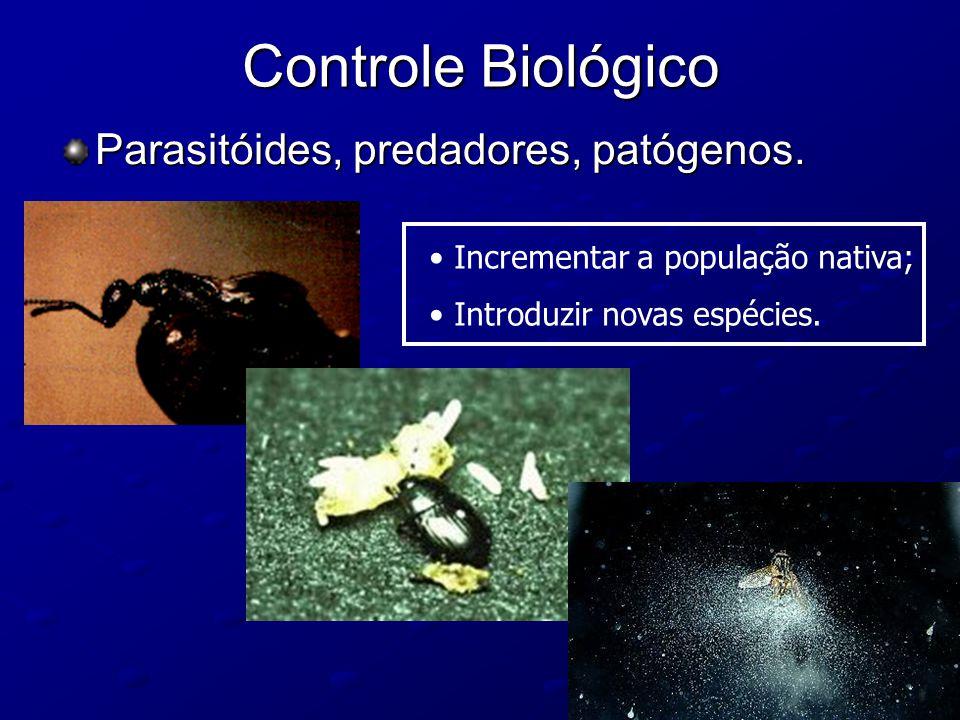 Controle Biológico Parasitóides, predadores, patógenos.