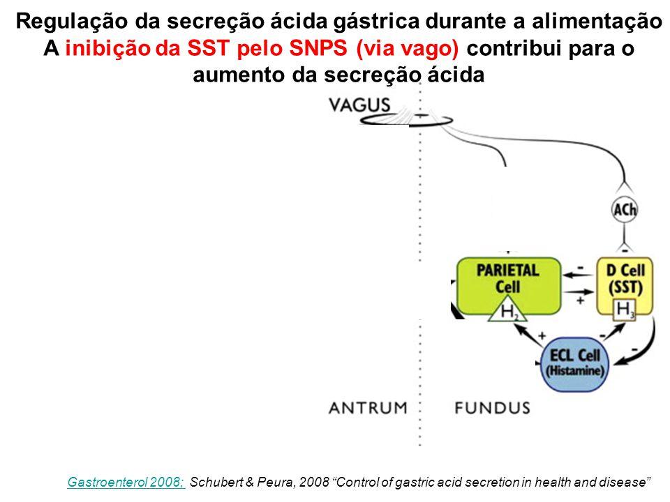 Regulação da secreção ácida gástrica durante a alimentação