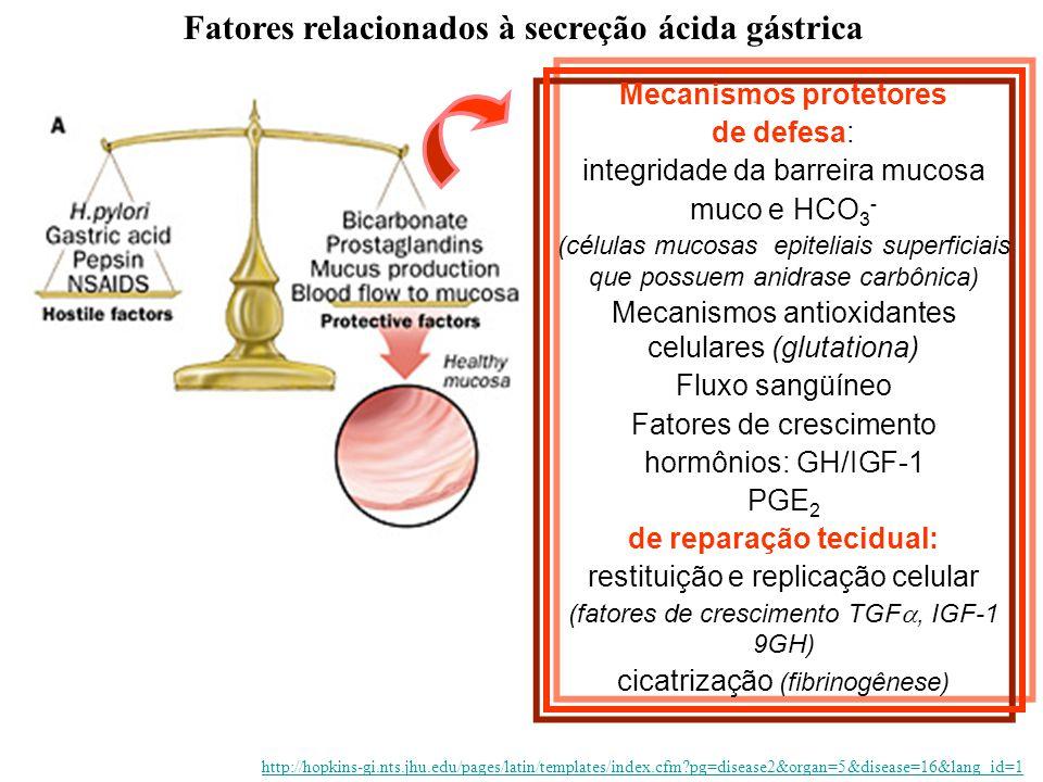Fatores relacionados à secreção ácida gástrica de reparação tecidual: