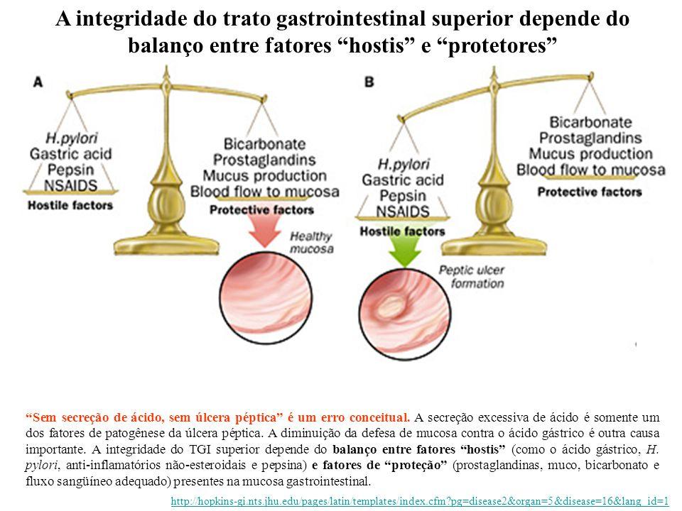 A integridade do trato gastrointestinal superior depende do