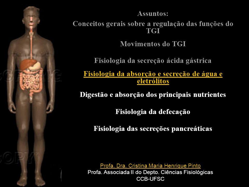 Conceitos gerais sobre a regulação das funções do TGI