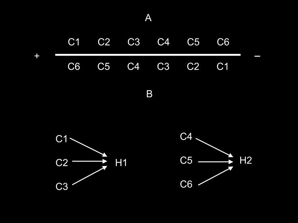 A C1 C2 C3 C4 C5 C6 _ + C6 C5 C4 C3 C2 C1 B C4 C5 H2 C6 C1 C2 H1 C3