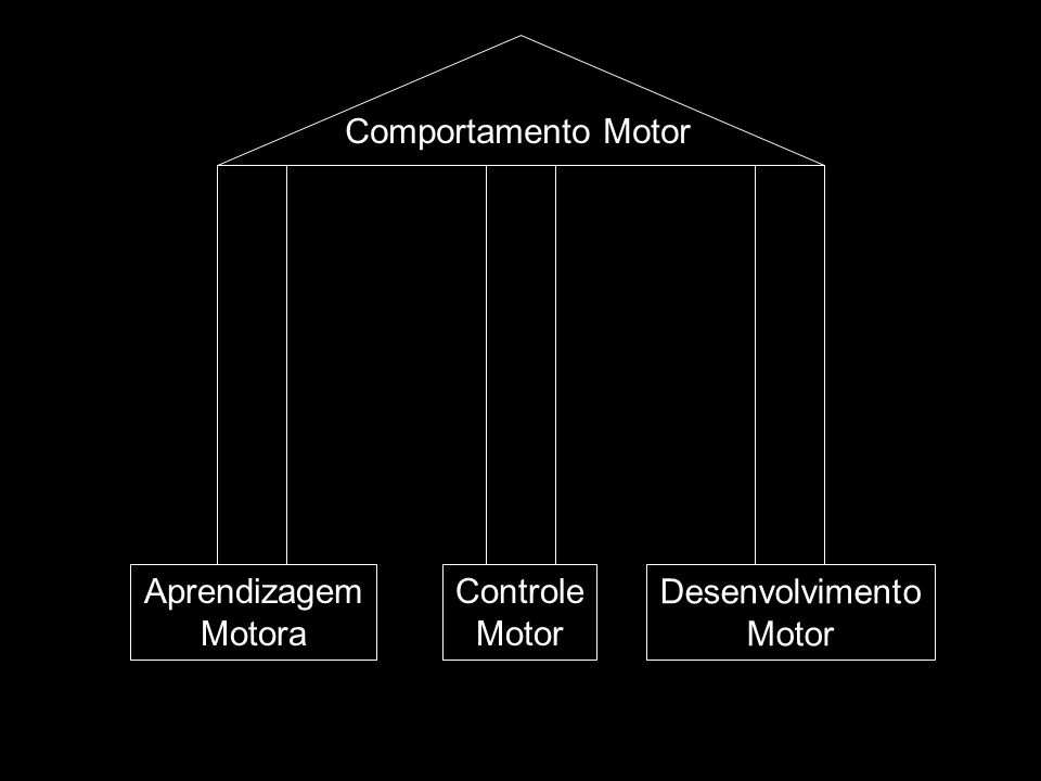 Comportamento Motor Aprendizagem Motora Controle Motor Desenvolvimento Motor