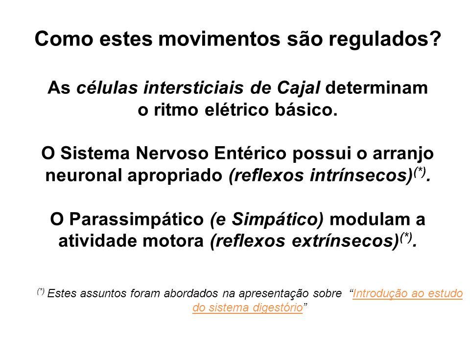 Como estes movimentos são regulados