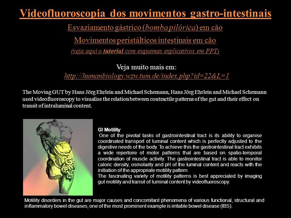 Videofluoroscopia dos movimentos gastro-intestinais