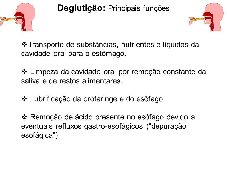 Deglutição: Principais funções