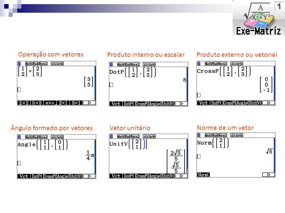 Operação com vetores Produto interno ou escalar. Produto externo ou vetorial. Ângulo formado por vetores.