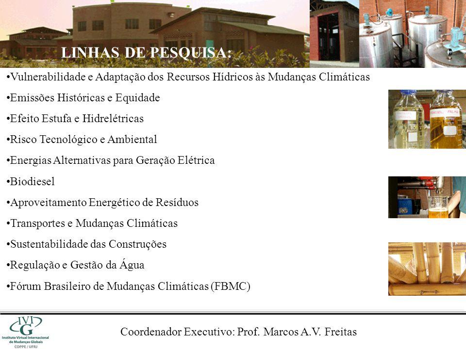 Coordenador Executivo: Prof. Marcos A.V. Freitas