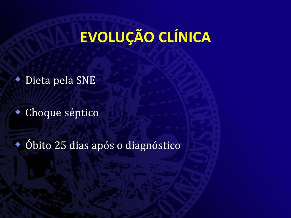 EVOLUÇÃO CLÍNICA Dieta pela SNE Choque séptico