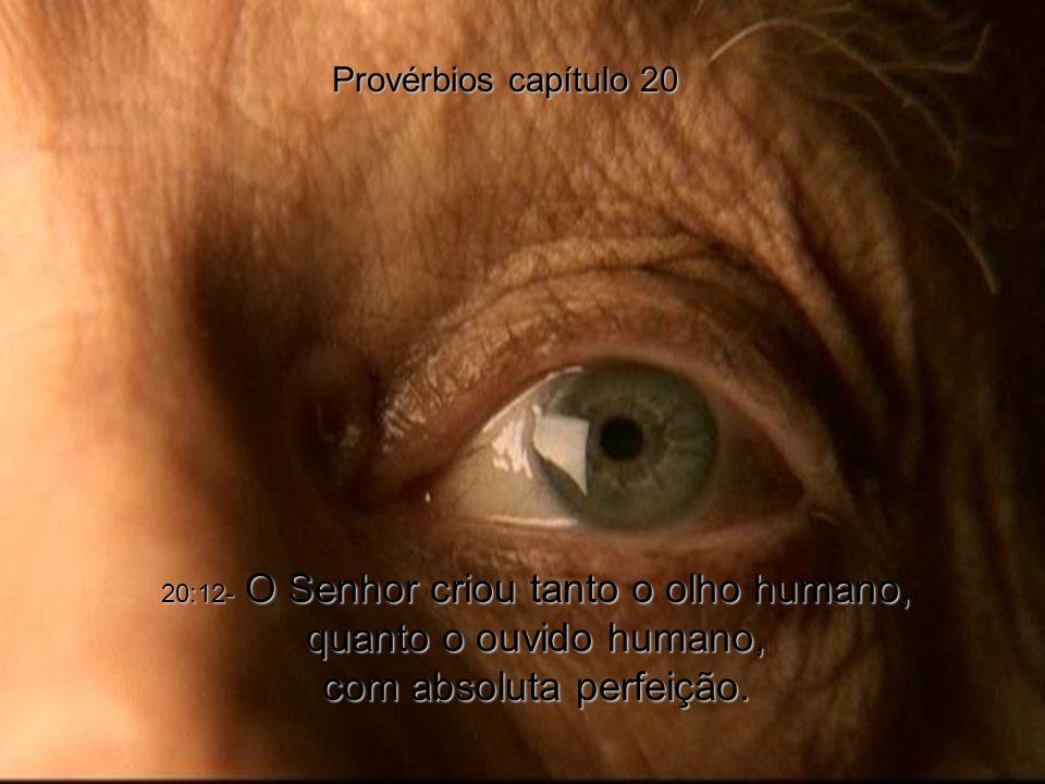 Provérbios capítulo 20 20:12- O Senhor criou tanto o olho humano, quanto o ouvido humano, com absoluta perfeição.