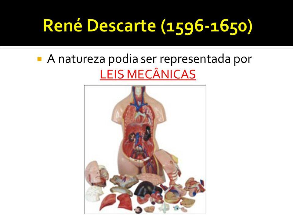 René Descarte (1596-1650) A natureza podia ser representada por