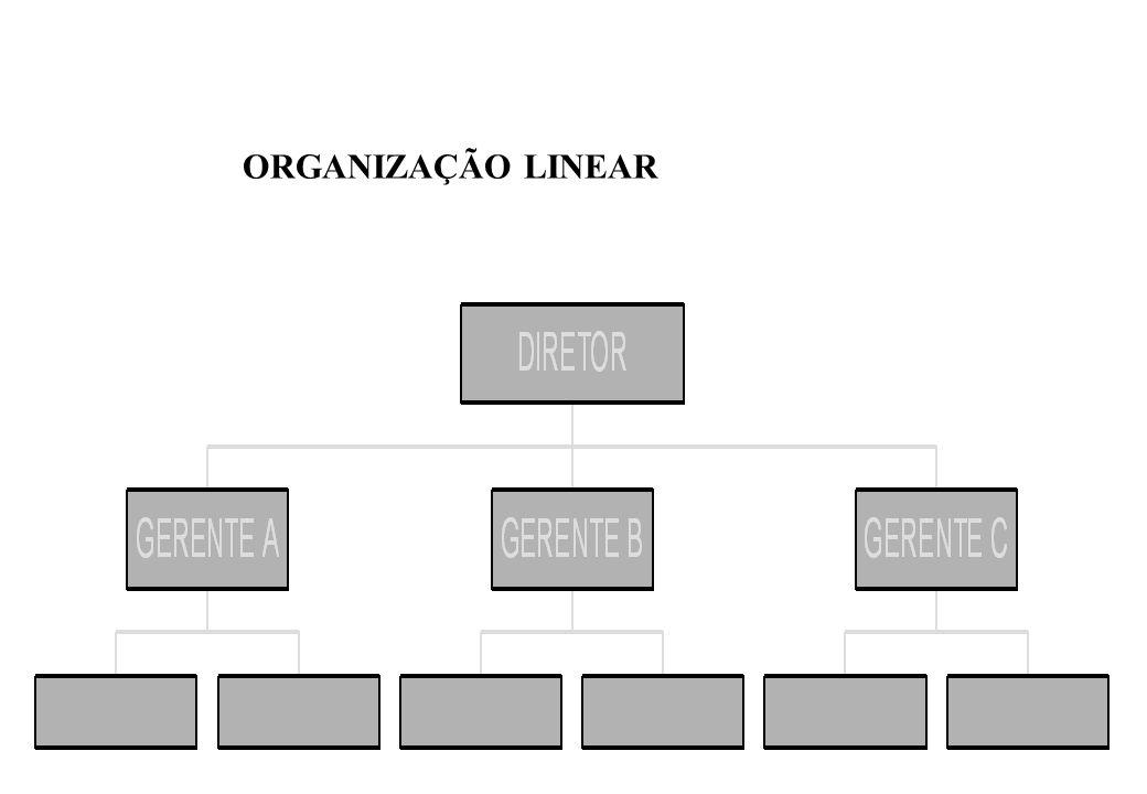 Características: 02) ORGANIZAÇÃO FUNCIONAL: