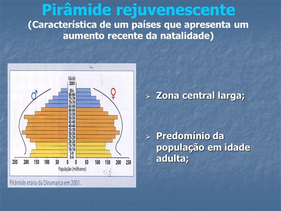 Pirâmide rejuvenescente (Característica de um países que apresenta um aumento recente da natalidade)