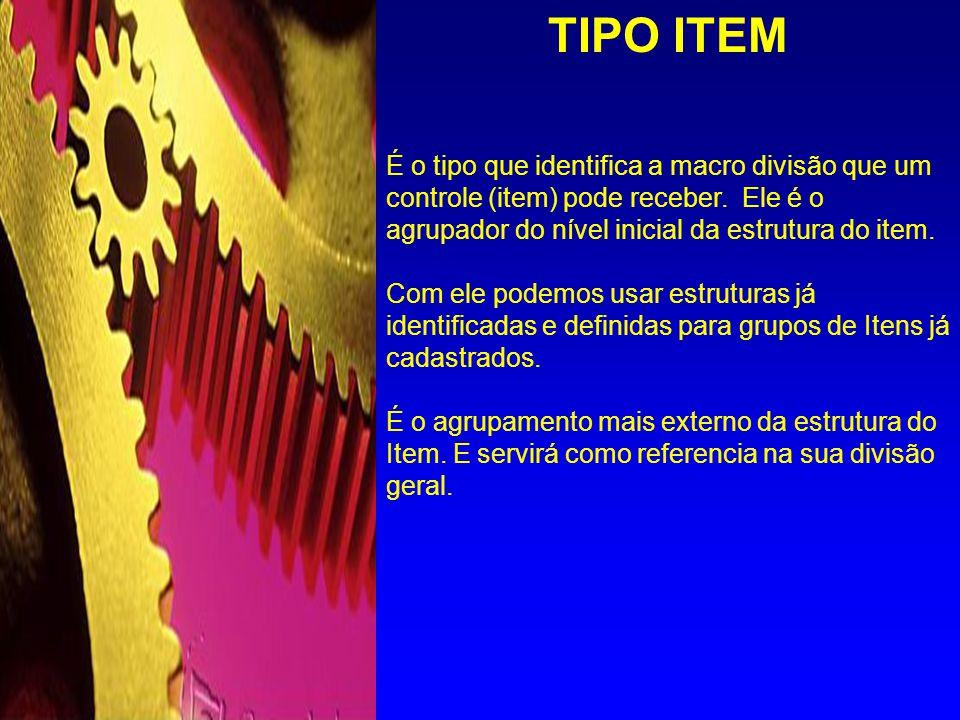 TIPO ITEM É o tipo que identifica a macro divisão que um controle (item) pode receber. Ele é o agrupador do nível inicial da estrutura do item.