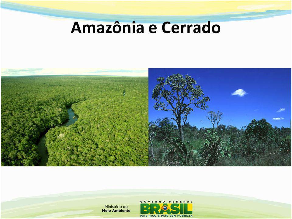 Amazônia e Cerrado