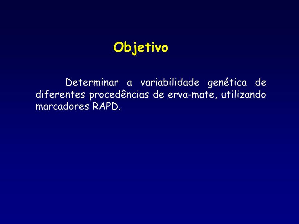 Objetivo Determinar a variabilidade genética de diferentes procedências de erva-mate, utilizando marcadores RAPD.