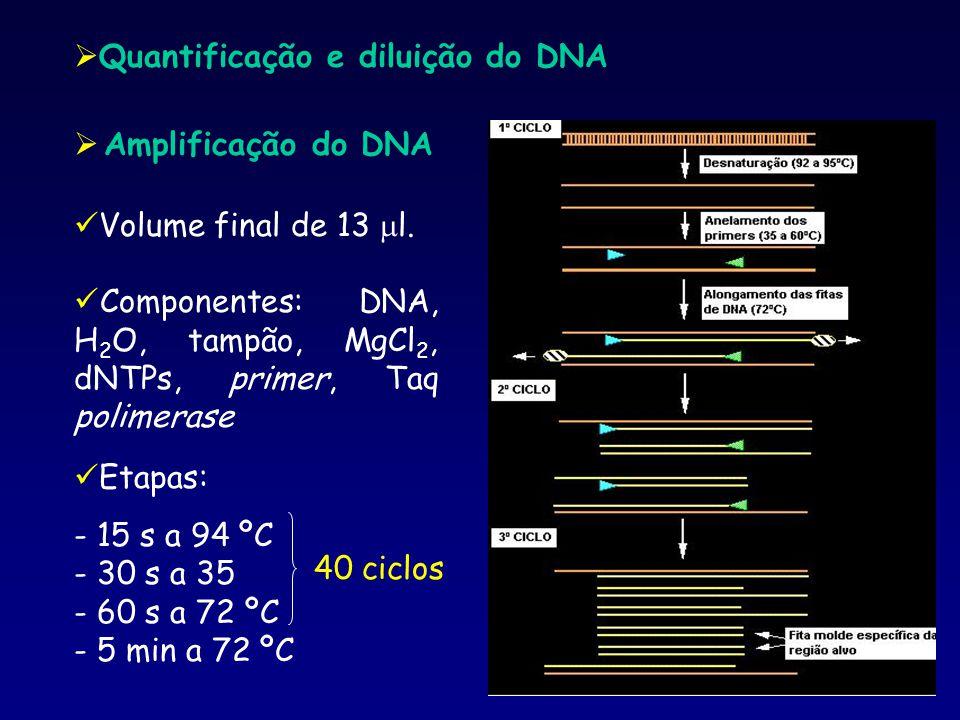 Quantificação e diluição do DNA