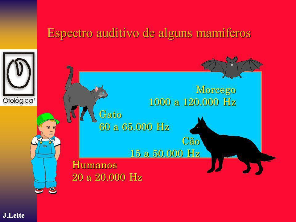 Espectro auditivo de alguns mamíferos