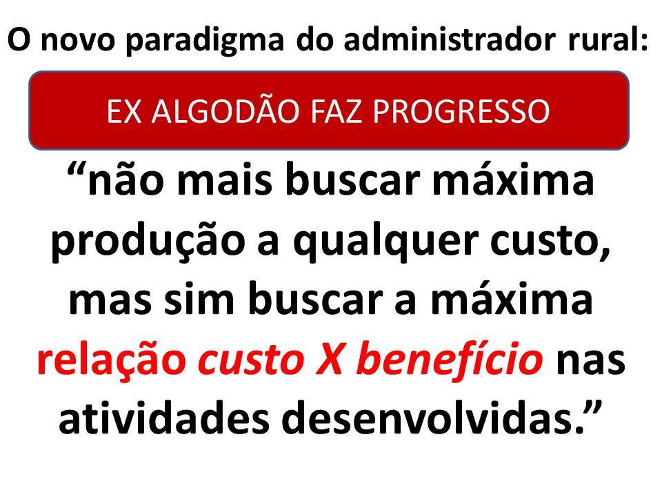 EX ALGODÃO FAZ PROGRESSO