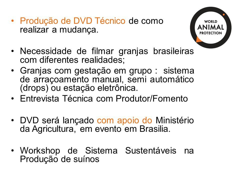 Produção de DVD Técnico de como realizar a mudança.