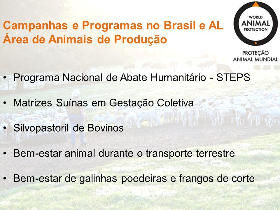 Campanhas e Programas no Brasil e AL Área de Animais de Produção