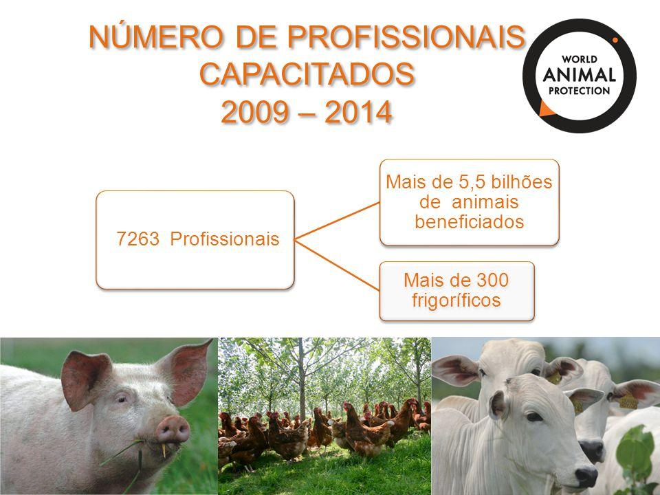 NÚMERO DE PROFISSIONAIS CAPACITADOS 2009 – 2014