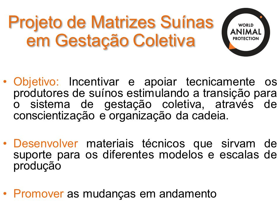 Projeto de Matrizes Suínas em Gestação Coletiva