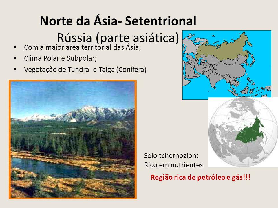 Norte da Ásia- Setentrional Rússia (parte asiática)