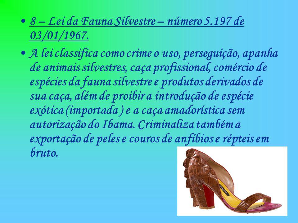 8 – Lei da Fauna Silvestre – número 5.197 de 03/01/1967.