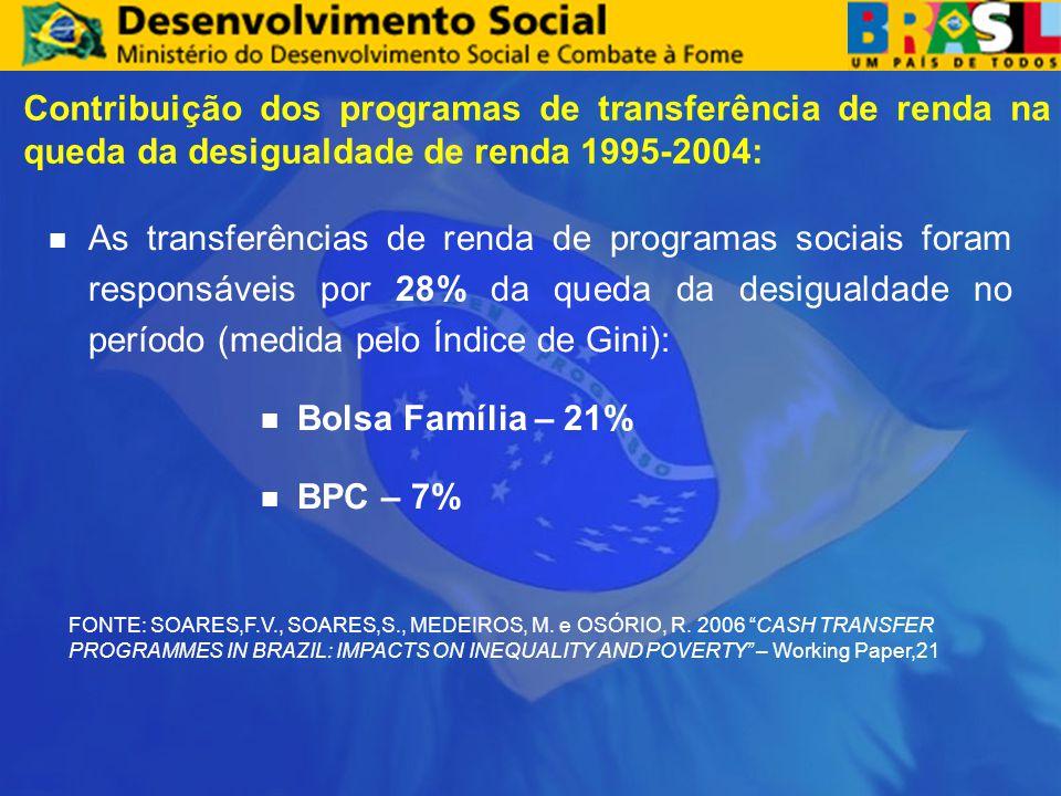 Contribuição dos programas de transferência de renda na queda da desigualdade de renda 1995-2004: